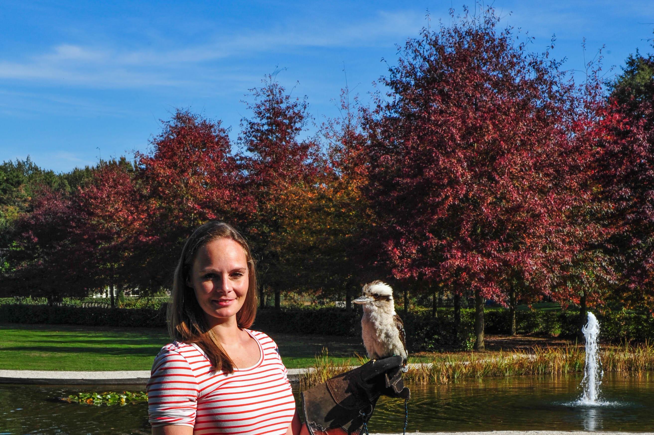 Een geweldig coachweekend met roofvogels